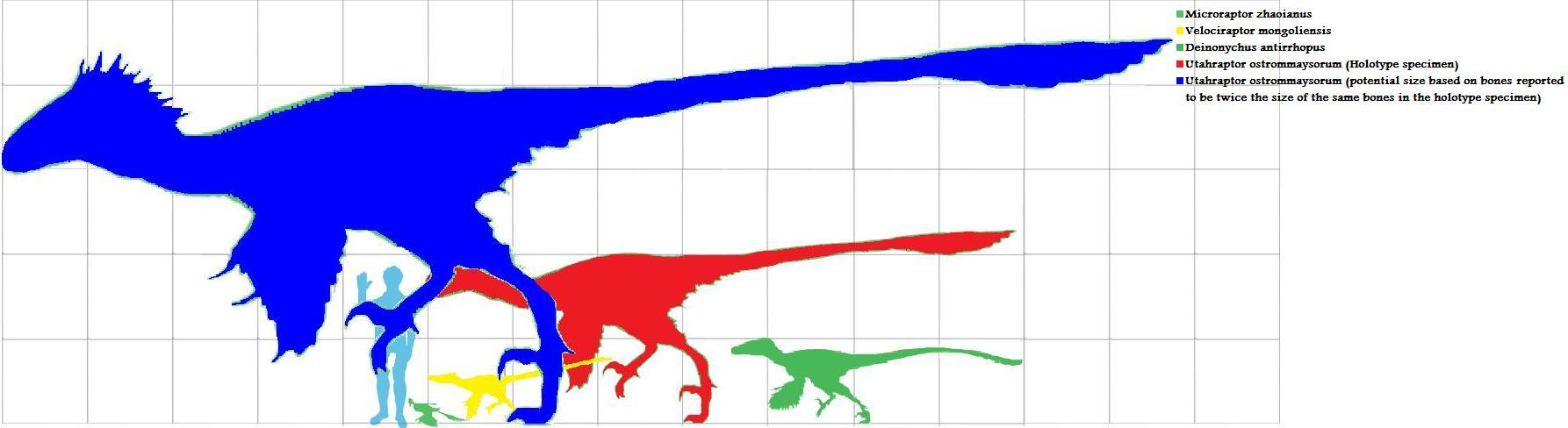 Brachiosaurus altithorax v Utahraptor ostrommaysorum (pack ...